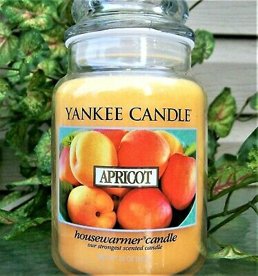 "Yankee Candle Retired ""apricot"" ~ Large 22 Oz ~ White Label~ Rare ~ New"