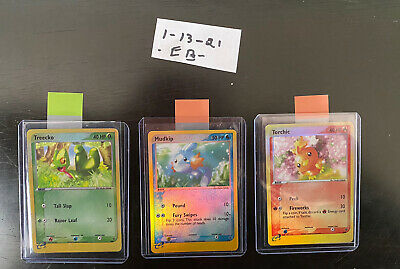 Pokemon Nintendo Treecko Torchic Mudkip 003 008 010 Black Star Promos PSA READY!