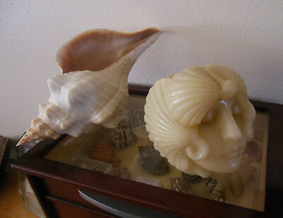 Seashell Shell Candle Art Deco Candle Sculpture Yankee Candle 51 Yrs Old Rare