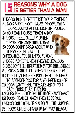 15 Reasons Why A Dog Is Better Than A Man Funny Sign Plaque Dogs Men Wall Art