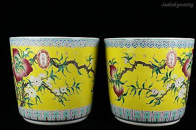 A Pair Huge Chinese Beautiful Famille Rose Porcelain Peach Flowers Pots