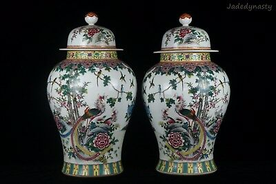 A Pair Big Chinese Beautiful Famille Rose Porcelain Flowers And Birds Jars