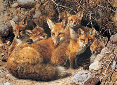 """Carl Brenders """"full House-fox Family"""" Glicee Canvas S/nw/coa Low-offer? Free S/h"""