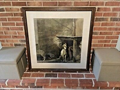Raccoon Original 1972 Andrew Wyeth Nygs Print Framed And Matted Uv Glass!!