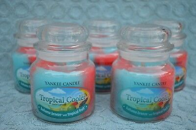 Lot Of 5 Yankee Candle Medium Jars 14.5 Oz New --- Tropical Cooler