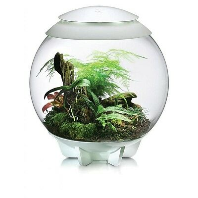 Biorbair By Oase - Fully Automated Terrarium For Tropical Plants