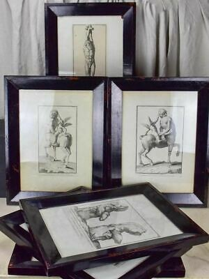"""Collection Of Six Antique Italian Mythological Engravings 17¼"""" X 22½"""""""