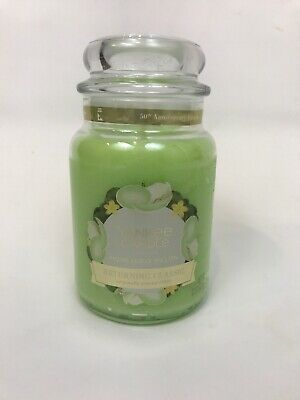 Yankee Candle Honeydew Melon Returning Classic 22 Oz Large Jar Candle