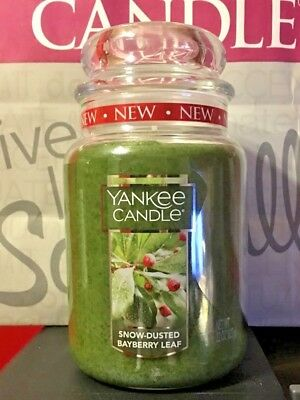 * Yankee Candle *  Snow Dusted Bayberry Leaf *  22 Oz. ~  Nla