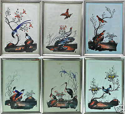 6 Antique Chinese China Qing Dynasty Watercolor Painting Pith Rice Paper 1850