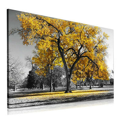 Best Stag Canvas Deals Compare Prices On Dealsan Co Uk