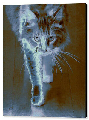 "Cat Walking  39""x49"", Canvas Print"