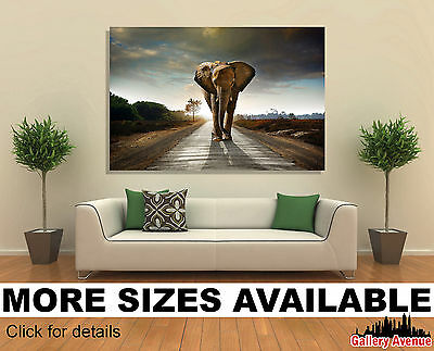 Wall Art Canvas Picture Print - Walking Elephant 3.2