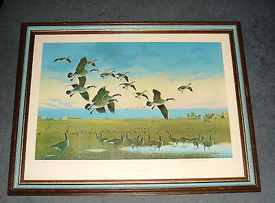 "Jerry Raedeke 17"" X 26"", Backyard Birds Ducks Unlimited Limited Edition Print"