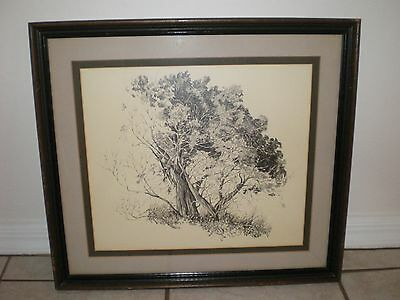 Daryl Dent 20th C Listed Artist Pencil Painting Of A Beautiful Tree Landscape