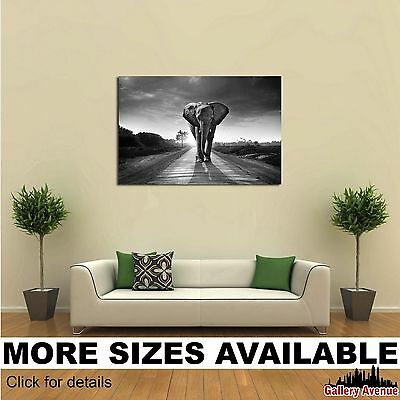 Wall Art Canvas Picture Print - Walking Elephant Bw 3.2