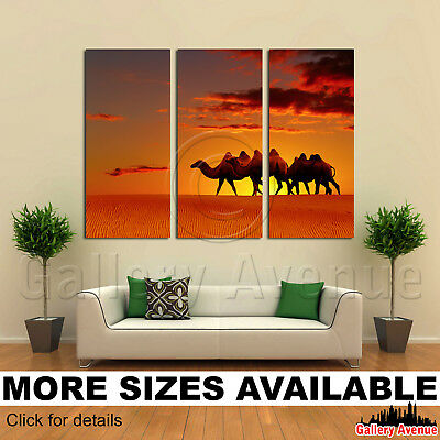 3 Panel Canvas Picture Print - Desert Camels Walking At Sunset 3.2