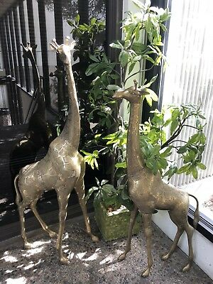 collectible vintage brass giraffe statues  beautiful proportions