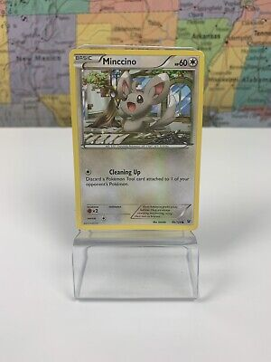 SHIPS SAME DAY Pokemon Minccino - 86/124 - Common NM XY 10: Fates Collide