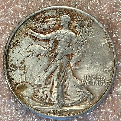 1929-s Walking Liberty Half - Superb Detail - High Quality Scans #h529
