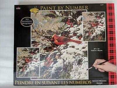 Plaid Paint By Numbers 21697 - Early Snow .50.8 X 40.6cm (20 X 16 In) Nos