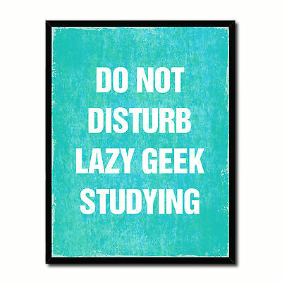 Do Not Disturb Lazy Geek Studying Funny Typo Sign 17012 Picture Frame Gifts Home