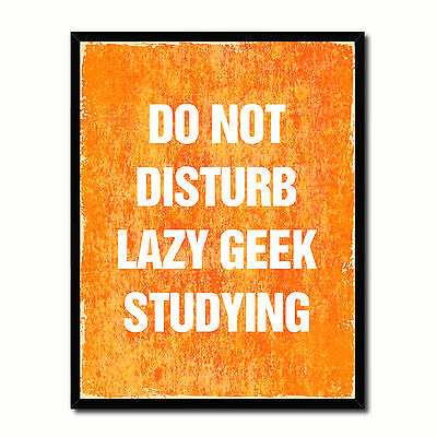 Do Not Disturb Lazy Geek Studying Funny Typo Sign 17013 Picture Frame Gifts Home