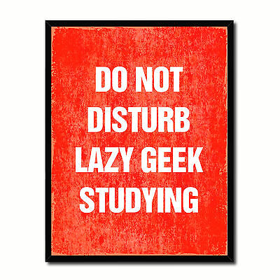 Do Not Disturb Lazy Geek Studying Funny Typo Sign 17014 Picture Frame Gifts Home