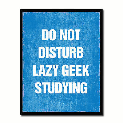 Do Not Disturb Lazy Geek Studying Funny Typo Sign 17010 Picture Frame Gifts Home