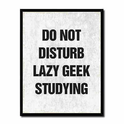 Do Not Disturb Lazy Geek Studying Funny Typo Sign 17016 Picture Frame Gifts Home