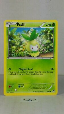 Petilil  9/114 Black & White: Base  Common Mint/NM  Pokemon