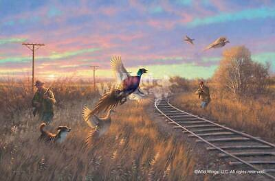 Walking The Line - Pheasant Limited Edition Canvas By Michael Sieve