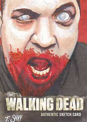 2012 Cryptozoic The Walking Dead Season 2 Tim Shay 1/1 Color Sketch Card Variant