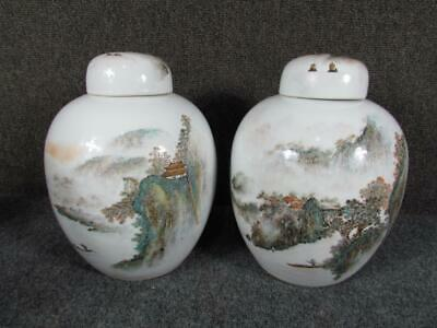 Pair Of Antique Chinese Covered Porcelain Temple Jars, Signed, Mountain Scenes