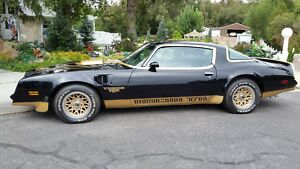 1978 Pontiac Trans Am Macho T/A Turbo 1978 Trans Am Macho T/A DKM  #199 Turbo 1 of 8 turbos, low miles Rare Bandit SE300