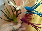 VINTAGE 1930's FEATHER Bird MILLINER FASCINATOR 1pc Hand Made JAPAN