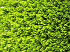 Artificial Grass Golf Fringe Turf, Golf Course Pathway, Lawn or Kids Football
