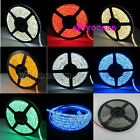 5M 3528 SMD 600 LED  IP65 Flexible Strip Lights 7 Colors for Christmas Decor