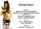 SEXY TIGER GIRL FANCY DRESS COSTUME FANCY DRESS HEN NIGHT STUDENT HALLOWEEN