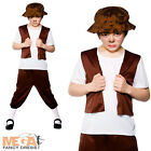 Tudor Boy + Hat Fancy Dress Book Week Kids Childs Medieval Book Boys Costume New