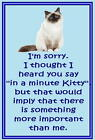 Birman cat - Funny cat sayings - Acrylic cat fridge magnets - .