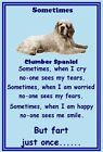 Clumber Spaniel - NEW - Set of 9 flexible magnets