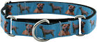 Country Brook Design™ Staffordshire Bull Terrier Ribbon Martingale Dog Collar