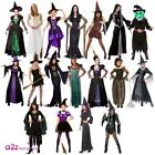 LADIES WITCH WITCHES HALLOWEEN BLACK WIDOW HORROR ADULT FANCY DRESS COSTUME