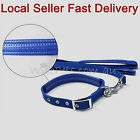 Adjustable Nylon Soft Padded Collar With leash Lead For Dog  Puppy Blue