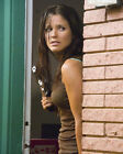 Sophia Bush Movie Photo [S274551] Size Choice