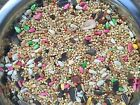 Dynasty Vita Cockatiel fruits seed mix breeders millet small bird food