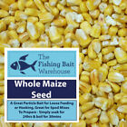 Whole Maize Seed, 1kg, 5kg, 20kg, Carp Fishing Particle, Tench, Bream
