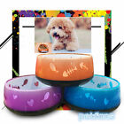 Puppy Feeding Dishing Watering Tools Dogs Cats Pets Bowl Bottle Travel Home