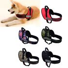 Pet Support Belt Adjustable Soft Padded Non Pull Dog Harness Vest Collar- XS-XL